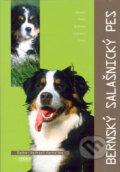 Bernský salašnický pes (Esther Verhoef-Verhallenová)